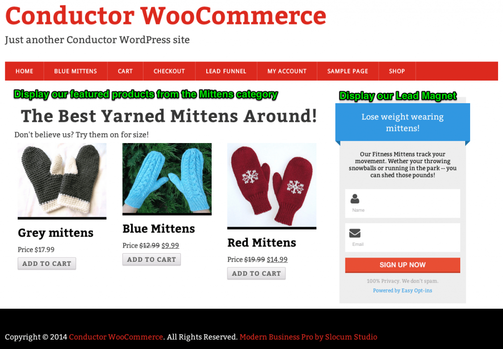 Display your WooCommerce products in the content area. Lead Magnet in the sidebar.